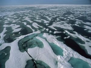 Hielo en el mar