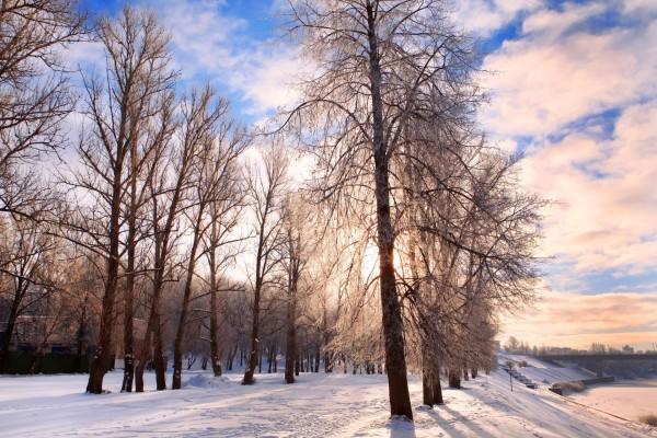 Nubes sobre un paisaje invernal