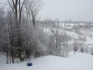 Postal: Una bola azul sobre la nieve
