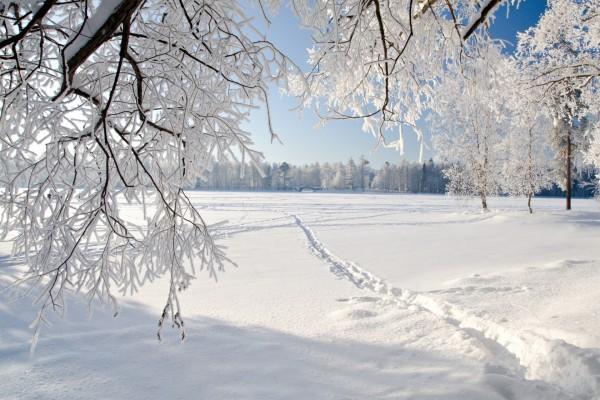 Río congelado cubierto de nieve
