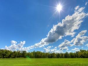 Radiante sol sobre un prado verde