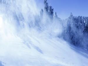 Viento sobre la nieve