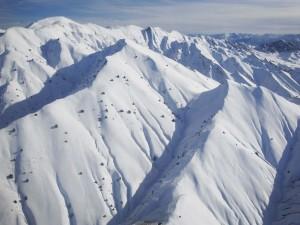 Árboles en las montañas blancas