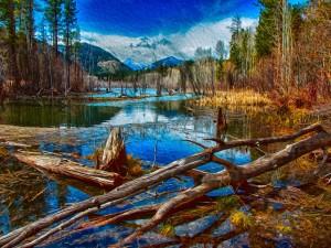 Postal: Imagen de un bello paisaje