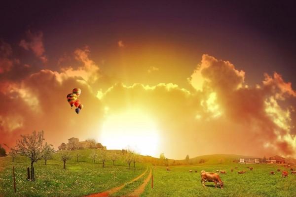 Globos volando sobre la granja