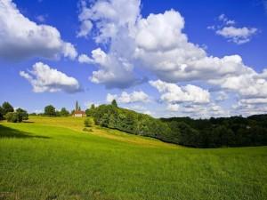 Casa en un campo verde