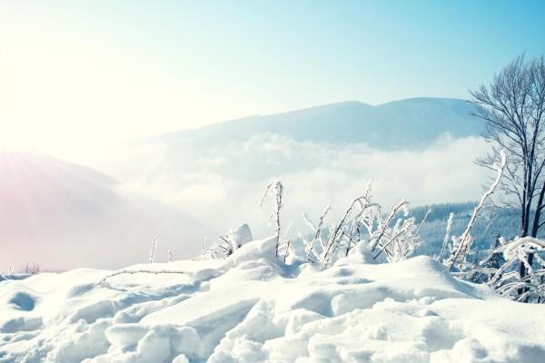 Blanca nieve