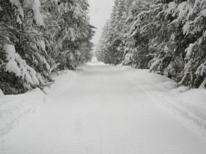 Postal: Camino ancho cubierto de nieve