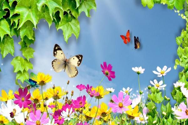 Mariposas volando sobre unas flores silvestres