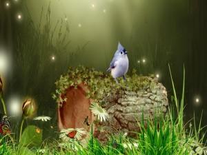 Pajarito en un bosque mágico