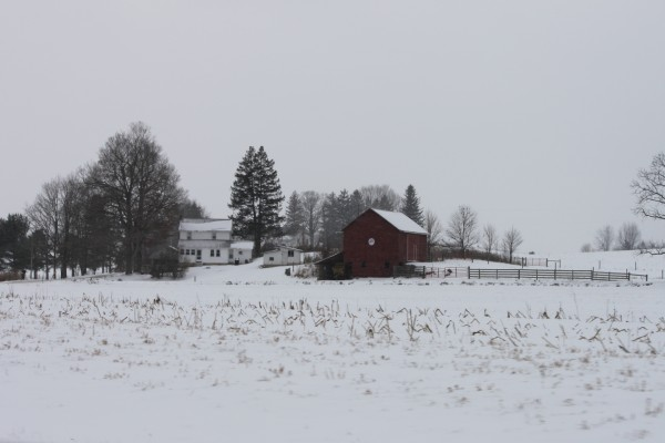 Nieve en una granja