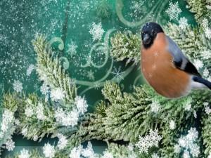 Postal: Copos de nieve caen sobre el árbol y un pajarito