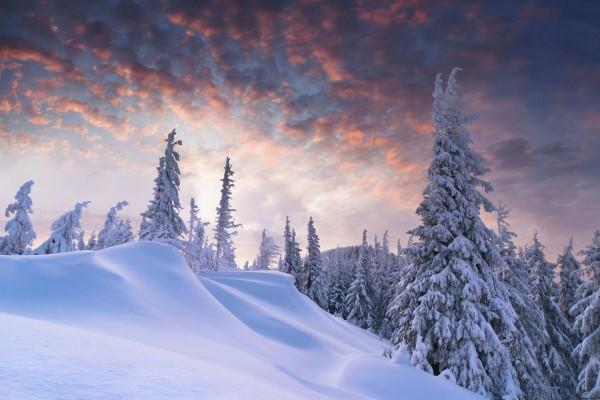 Nuevo día sobre un paraje cubierto de nieve