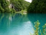 Un lago de aguas verdes