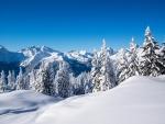 Cielo azul sobre unas montañas y pinos cubiertos de nieve