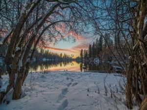 Huellas en la nieve junto a un lago