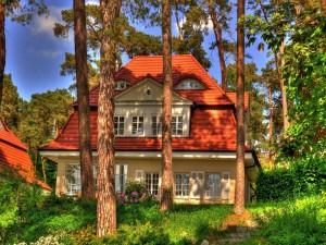 Hermosa casa entre los árboles