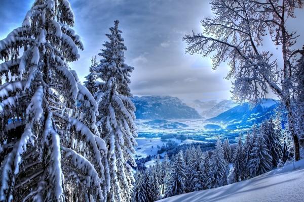 Paisaje iluminado y cubierto de nieve