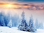 Radiante sol tras las montañas nevadas