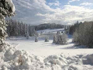 Postal: Pequeño lago helado en un paraje nevado