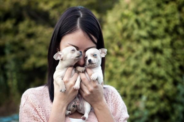 Muchacha sosteniendo a dos cachorros