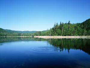 Ondas en el agua de un lago