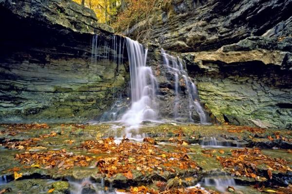 Hojas otoñales bajo una cascada