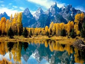 Postal: Montañas y árboles otoñales reflejados en un lago