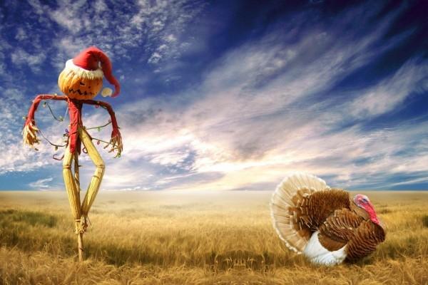 Espantapájaros junto a un pavo en el campo