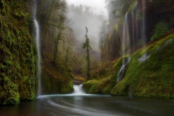 Diferentes cascadas en el interior de un bosque