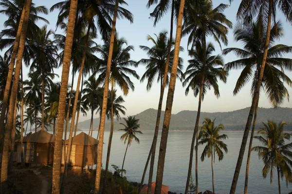 Cabañas entre las palmeras