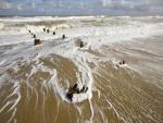 Restos de un muelle de madera en una playa