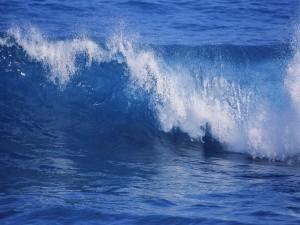 Postal: Pequeña ola en el mar azul