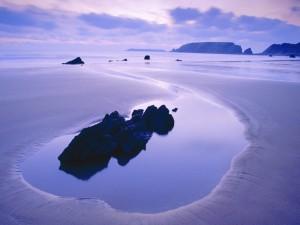 Pequeñas rocas sobre la arena húmeda de una playa