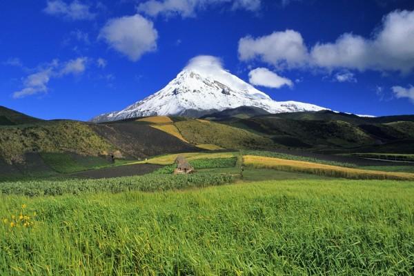 Montaña nevada junto a un prado verde