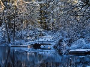 Embarcadero cubierto de nieve