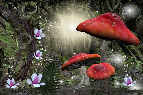 Grandes setas en un bosque fantástico