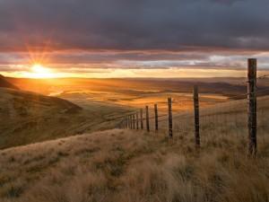 Postal: Sol de la mañana en el campo
