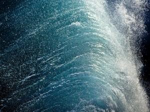 Postal: Agua fluyendo en una cascada