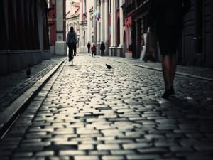 Palomas y transeúntes en una calle empedrada