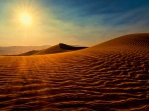 Desierto bajo el sol