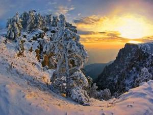 Postal: Amanecer de invierno
