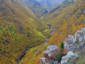 Postal: Un río bajo las montañas