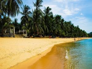 Postal: Hermoso día en una playa