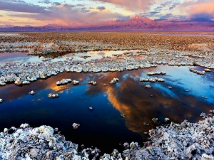 Postal: Salar de Atacama