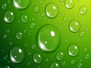 Gotas de agua en un fondo verde