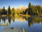 Reflejos sobre un lago