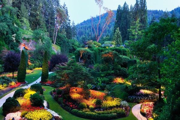Un hermoso jardín