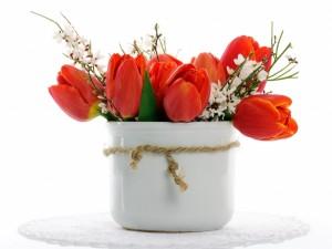 Postal: Tulipanes rojos en un florero