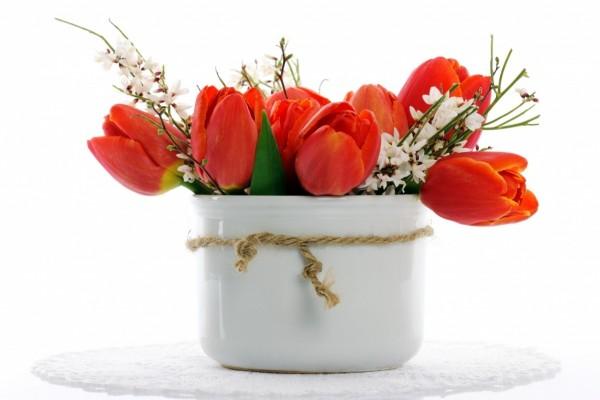 Tulipanes rojos en un florero